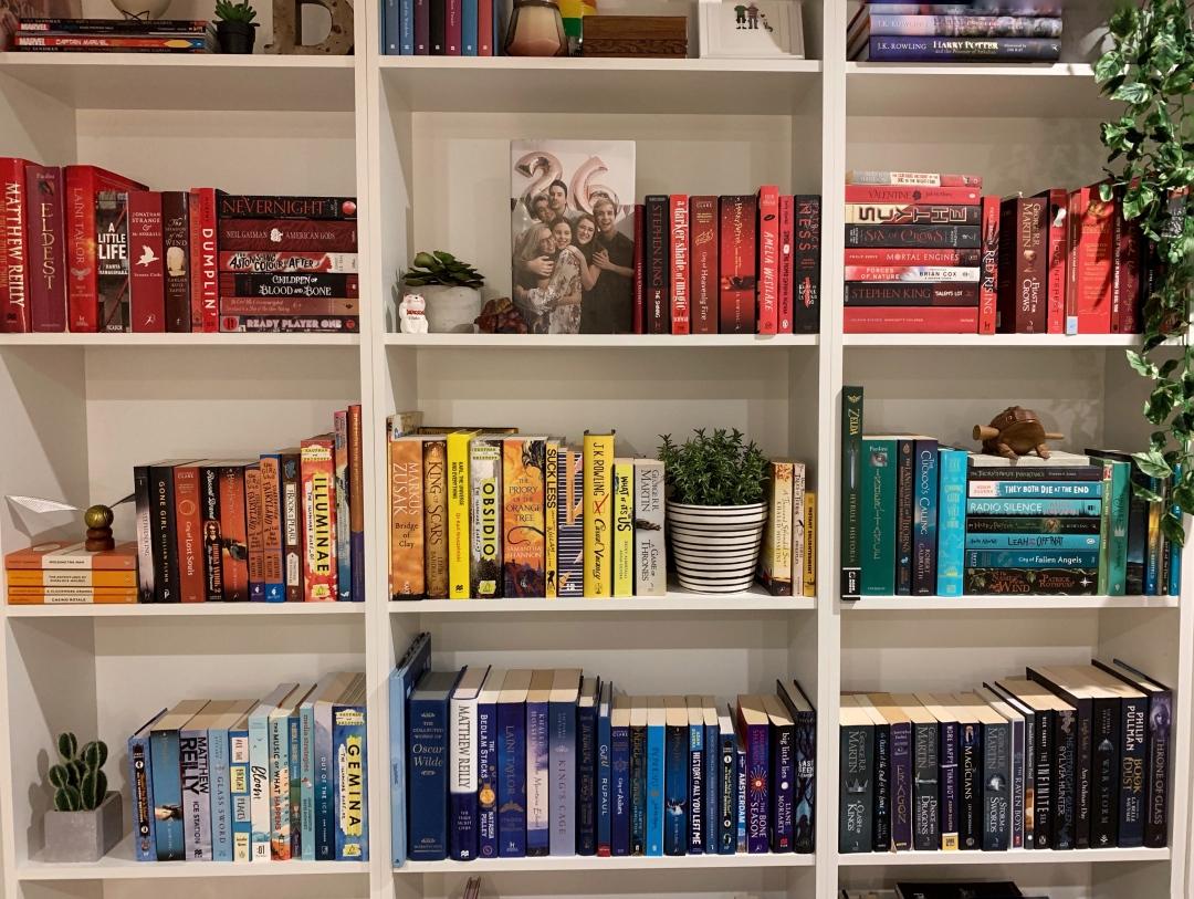 rainbow-bookshelf-ya